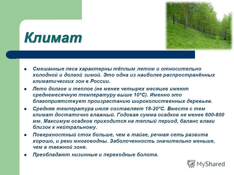 Климат Смешанные леса характерны тёплым летом и относительно холодной и долгой зимой. Это одна из наиболее распространённых климатических зон в России. Лето долгое и теплое (не менее четырех месяцев имеют среднемесячную температуру выше 10°С). Именно