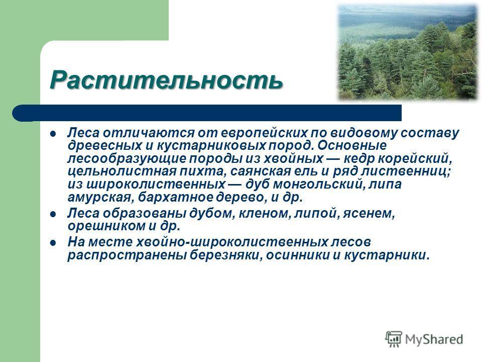 Растительность Леса отличаются от европейских по видовому составу древесных и кустарниковых пород. Основные лесообразующие породы из хвойных кедр корейский, цельнолистная пихта, саянская ель и ряд лиственниц; из широколиственных дуб монгольский, липа