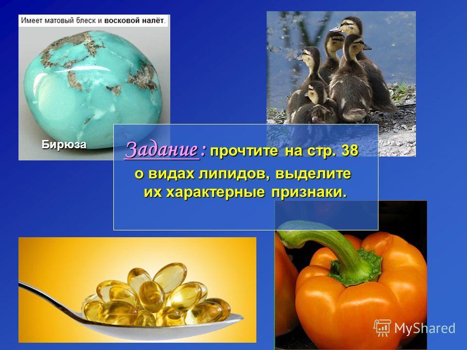 Бирюза Задание : прочтите на стр. 38 о видах липидов, выделите их характерные признаки.