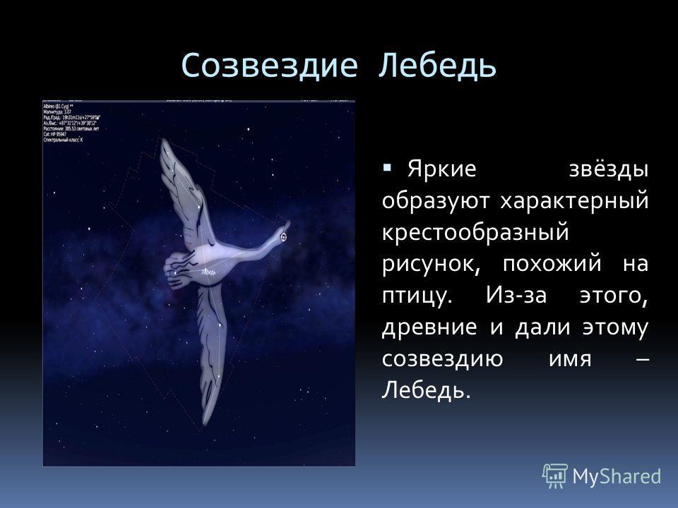 Созвездие Лебедь Яркие звёзды образуют характерный крестообразный рисунок, похожий на птицу. Из-за этого, древние и дали этому созвездию имя – Лебедь.