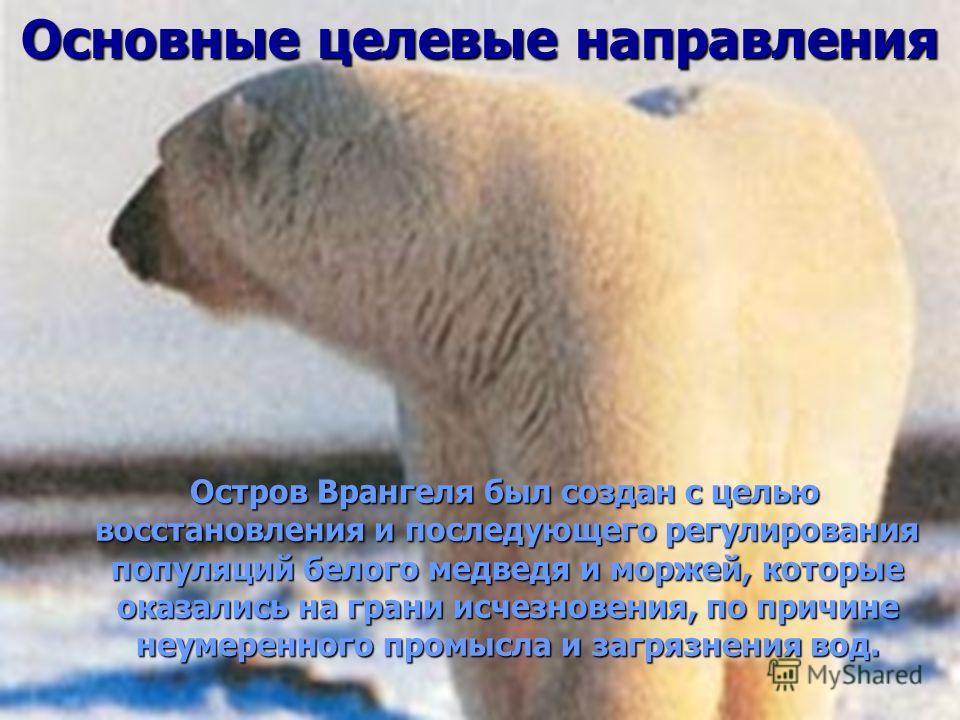 Основные целевые направления Остров Врангеля был создан с целью восстановления и последующего регулирования популяций белого медведя и моржей, которые оказались на грани исчезновения, по причине неумеренного промысла и загрязнения вод. Остров Врангел