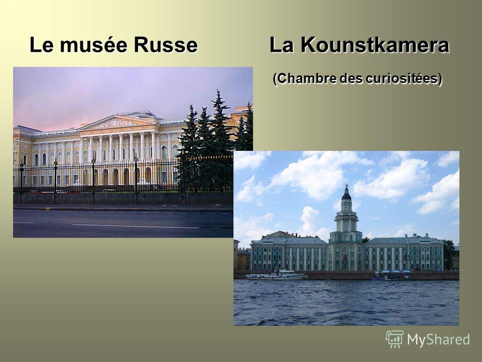 Le musée Russe La Kounstkamera (Chambre des curiositées) (Chambre des curiositées)