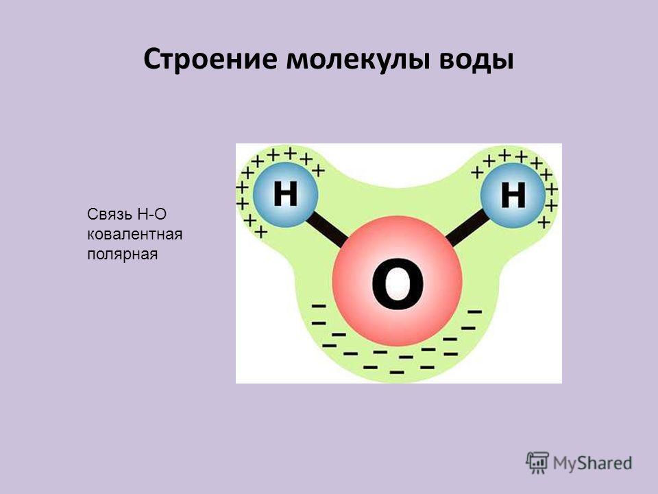 Строение молекулы воды Связь Н-О ковалентная полярная