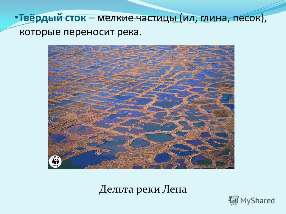 Твёрдый сток – мелкие частицы (ил, глина, песок), которые переносит река. Дельта реки Лена