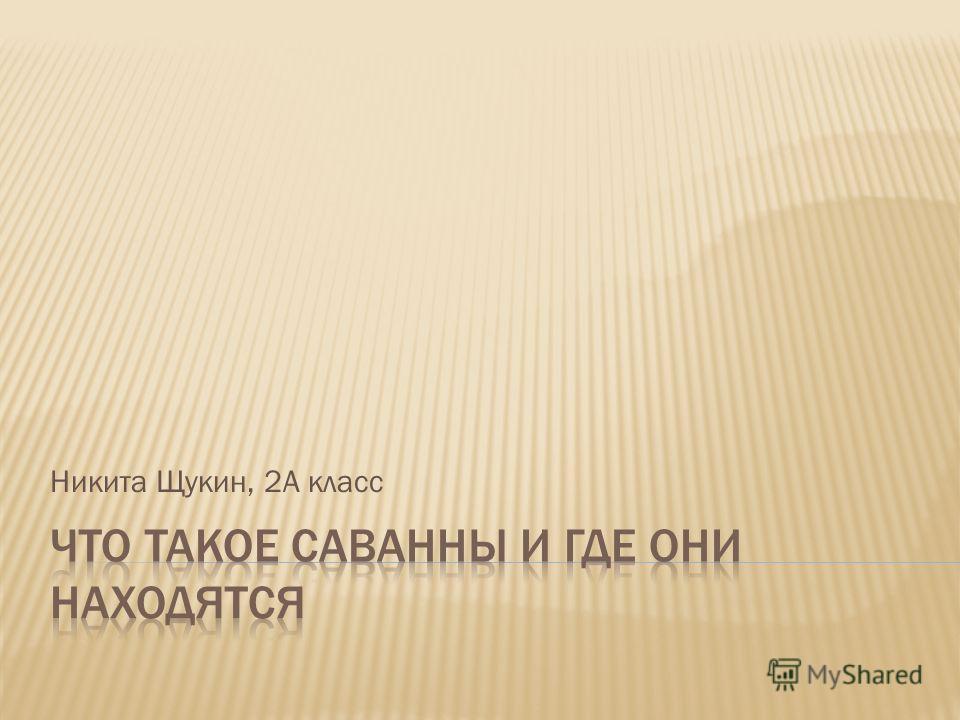 Никита Щукин, 2А класс