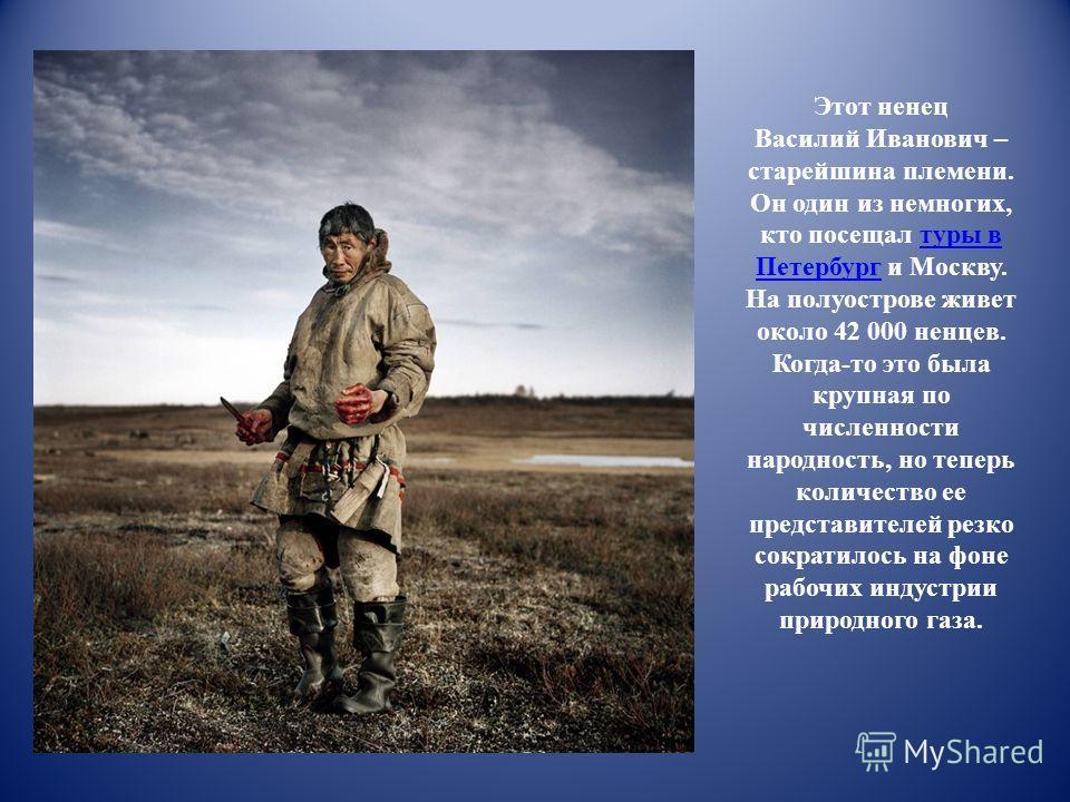 Этот ненец Василий Иванович – старейшина племени. Он один из немногих, кто посещал туры в Петербург и Москву. На полуострове живет около 42 000 ненцев. Когда-то это была крупная по численности народность, но теперь количество ее представителей резко