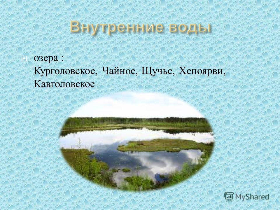 озера : Курголовское, Чайное, Щучье, Хепоярви, Кавголовское
