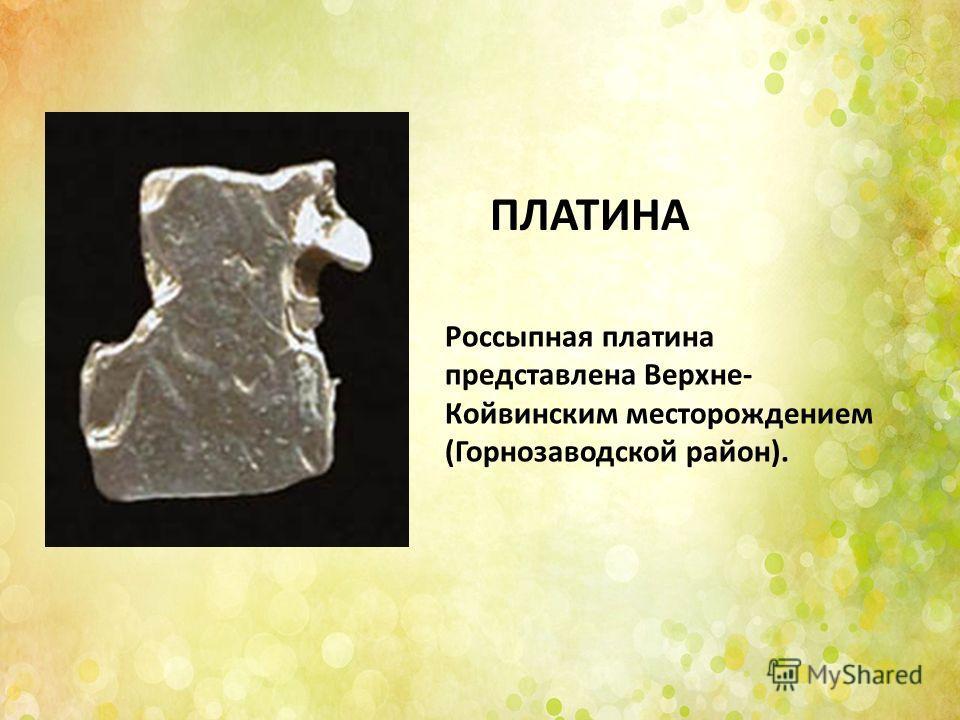 Россыпная платина представлена Верхне- Койвинским месторождением (Горнозаводской район). ПЛАТИНА