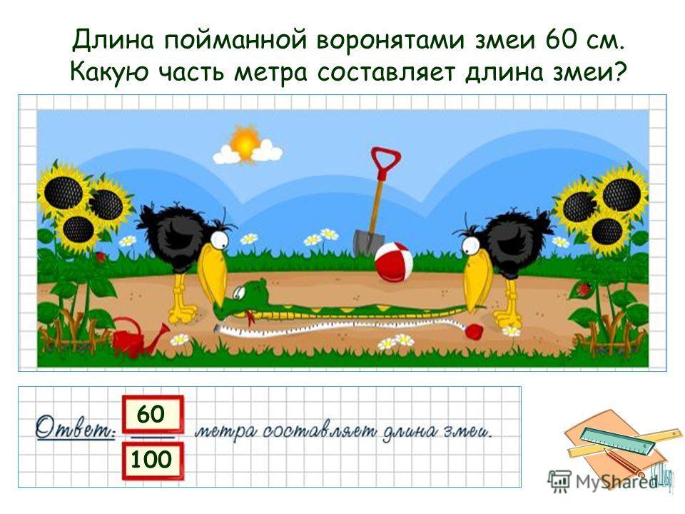 60 100 Длина пойманной воронятами змеи 60 см. Какую часть метра составляет длина змеи?