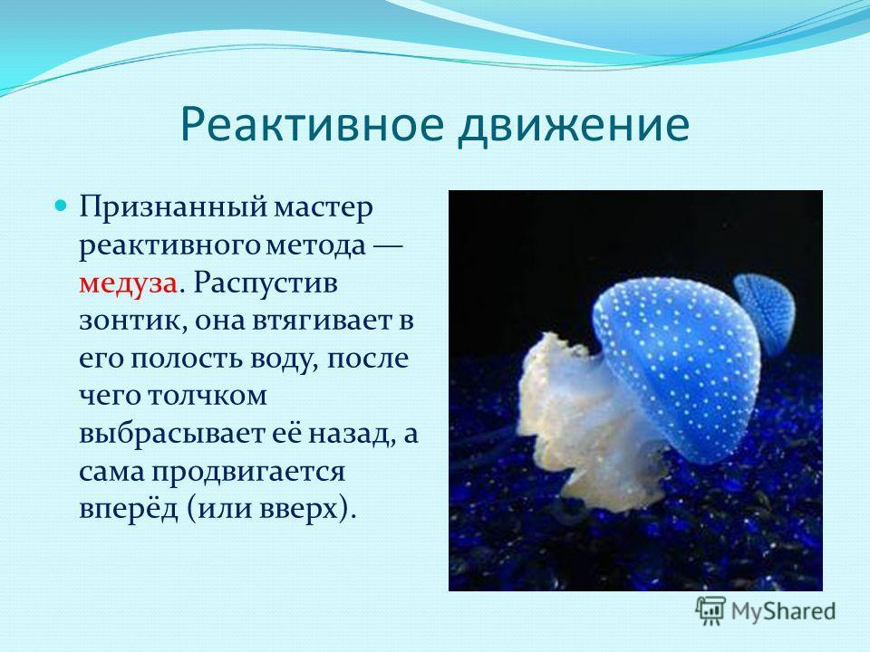 Реактивное движение Признанный мастер реактивного метода медуза. Распустив зонтик, она втягивает в его полость воду, после чего толчком выбрасывает её назад, а сама продвигается вперёд (или вверх).