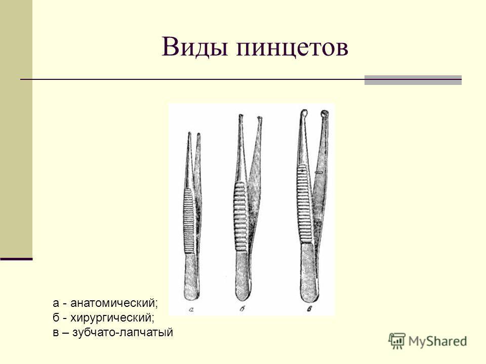 Виды пинцетов а - анатомический; б - хирургический; в – зубчато-лапчатый