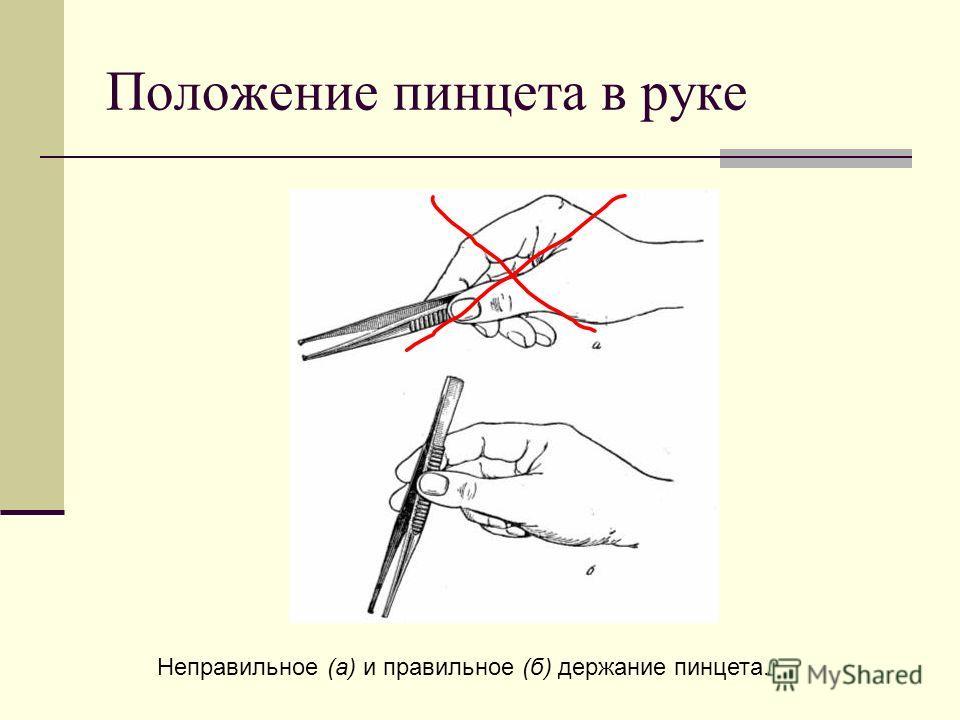 Положение пинцета в руке Неправильное (а) и правильное (б) держание пинцета.