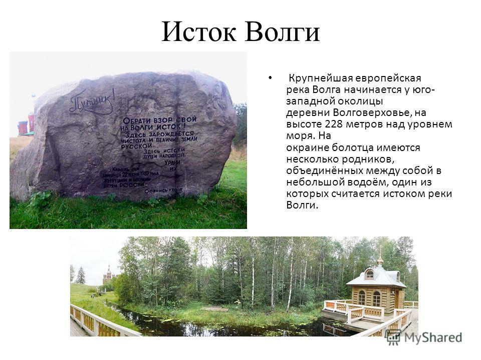 Исток Волги Крупнейшая европейская река Волга начинается у юго- западной околицы деревни Волговерховье, на высоте 228 метров над уровнем моря. На окраине болотца имеются несколько родников, объединённых между собой в небольшой водоём, один из которых