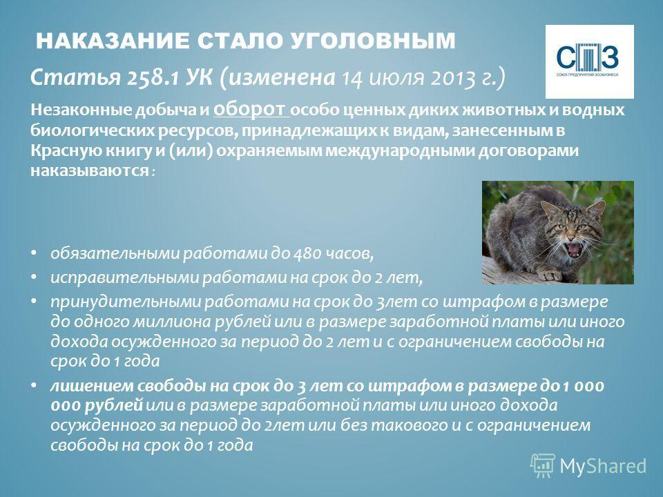 НАКАЗАНИЕ СТАЛО УГОЛОВНЫМ Статья 258.1 УК (изменена 14 июля 2013 г.) Незаконные добыча и оборот особо ценных диких животных и водных биологических ресурсов, принадлежащих к видам, занесенным в Красную книгу и (или) охраняемым международными договорам