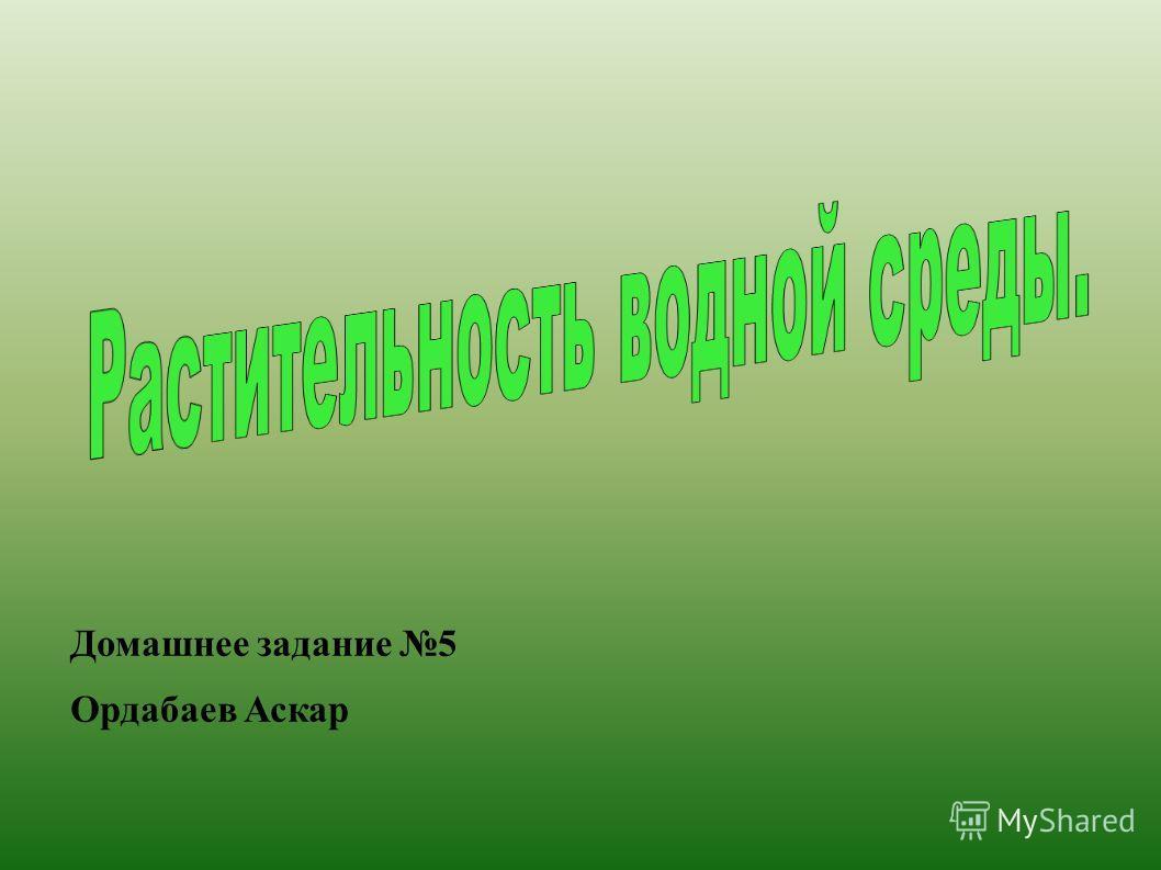Домашнее задание 5 Ордабаев Аскар