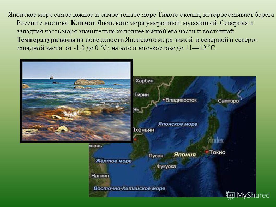 Японское море самое южное и самое теплое море Тихого океана, которое омывает берега России с востока. Климат Японского моря умеренный, муссонный. Северная и западная часть моря значительно холоднее южной его части и восточной. Температура воды на пов
