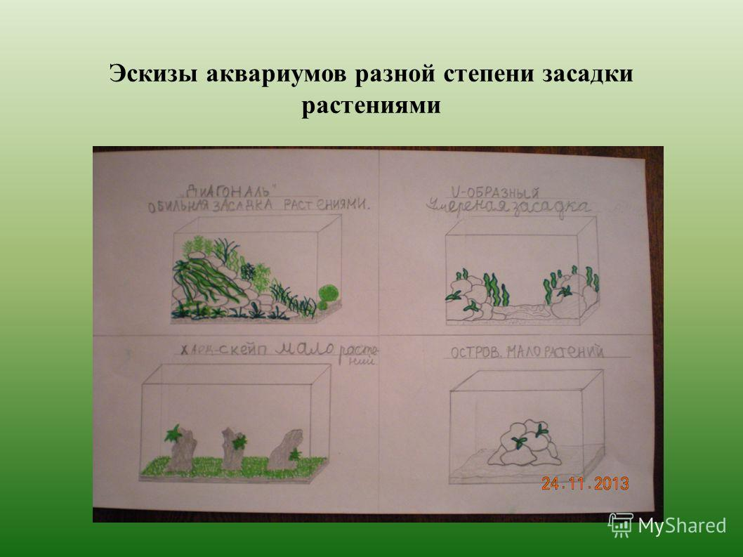 Эскизы аквариумов разной степени засадки растенийями