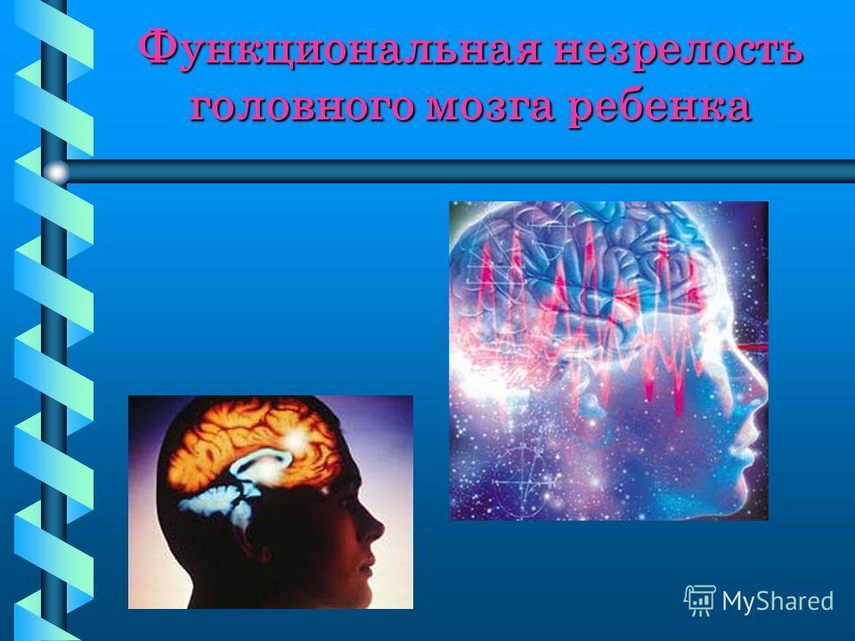 Функциональная незрелость головного мозга ребенка