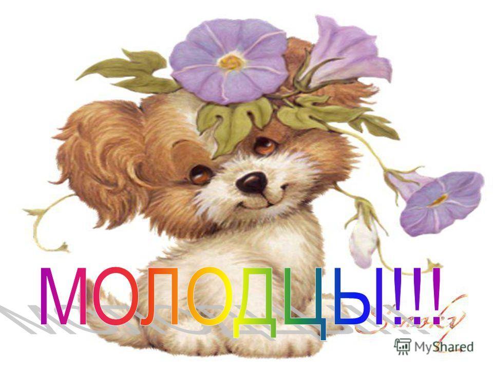 Усевшийся на мостовой Бим из нержавеющей стали стал памятником не только литературному прототипу, но и автору книги - Гавриилу Троепольскому. «Хочешь сделать ребёнка счастливым – купи ему собаку. Хочешь, чтобы и собака была счастлива - пусть ребёнок