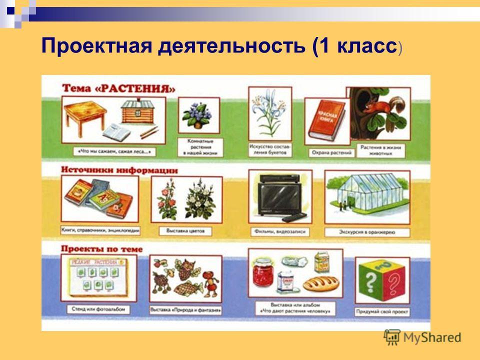 Проектная деятельность (1 класс )