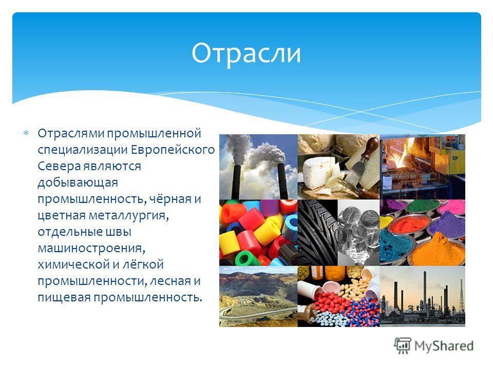 Отраслями промышленной специализации Европейского Севера являются добывающая промышленность, чёрная и цветная металлургия, отдельные швы машиностроения, химической и лёгкой промышленности, лесная и пищевая промышленность. Отрасли
