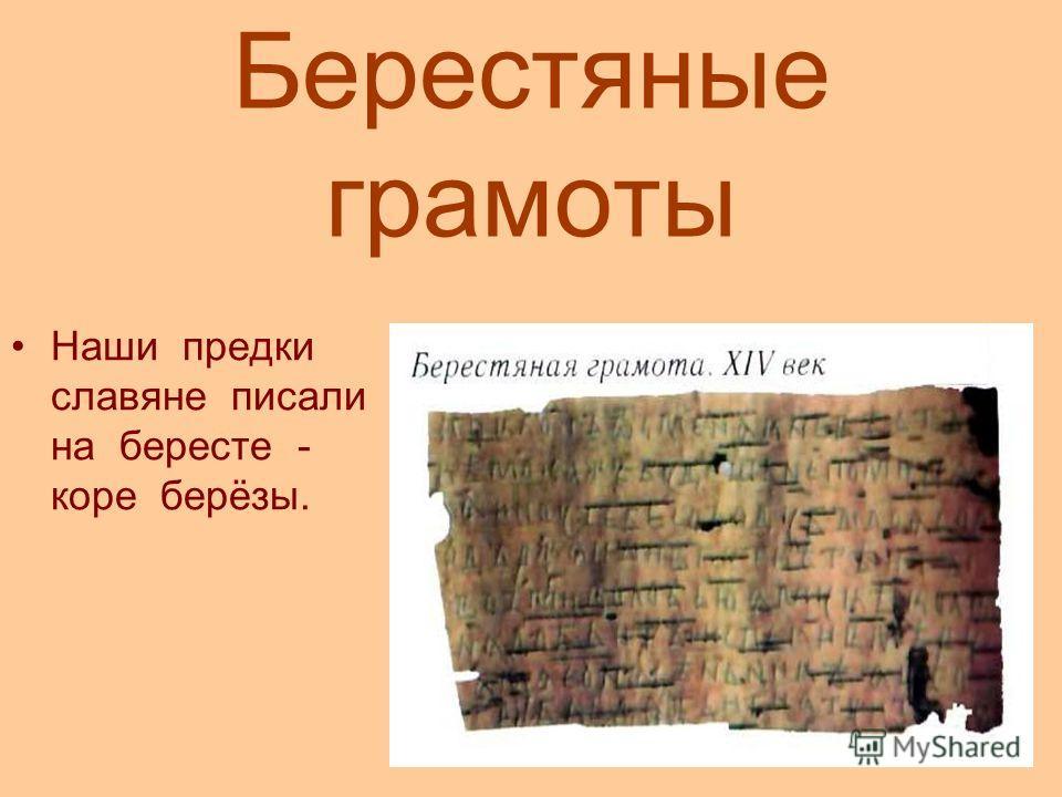 Берестяные грамоты Наши предки славяне писали на бересте - коре берёзы.