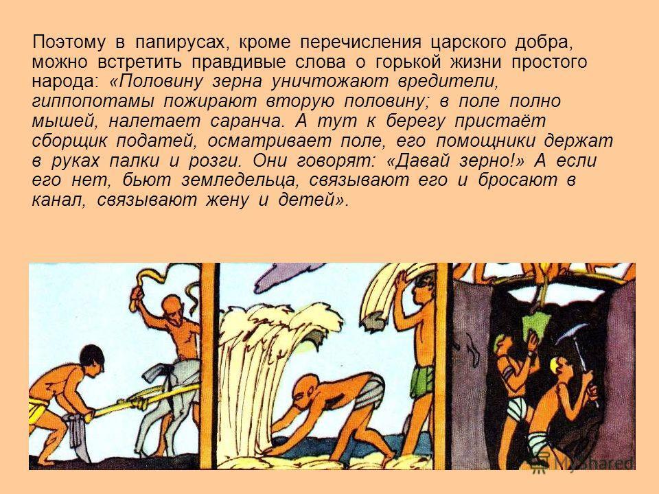 Поэтому в папирусах, кроме перечисления царского добра, можно встретить правдивые слова о горькой жизни простого народа: «Половину зерна уничтожают вредители, гиппопотамы пожирают вторую половину; в поле полно мышей, налетает саранча. А тут к берегу
