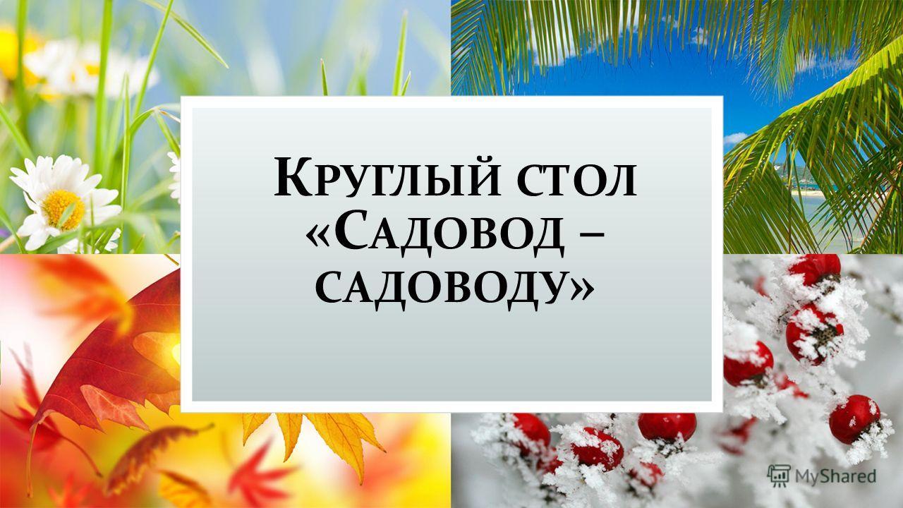 К РУГЛЫЙ СТОЛ «С АДОВОД – САДОВОДУ »