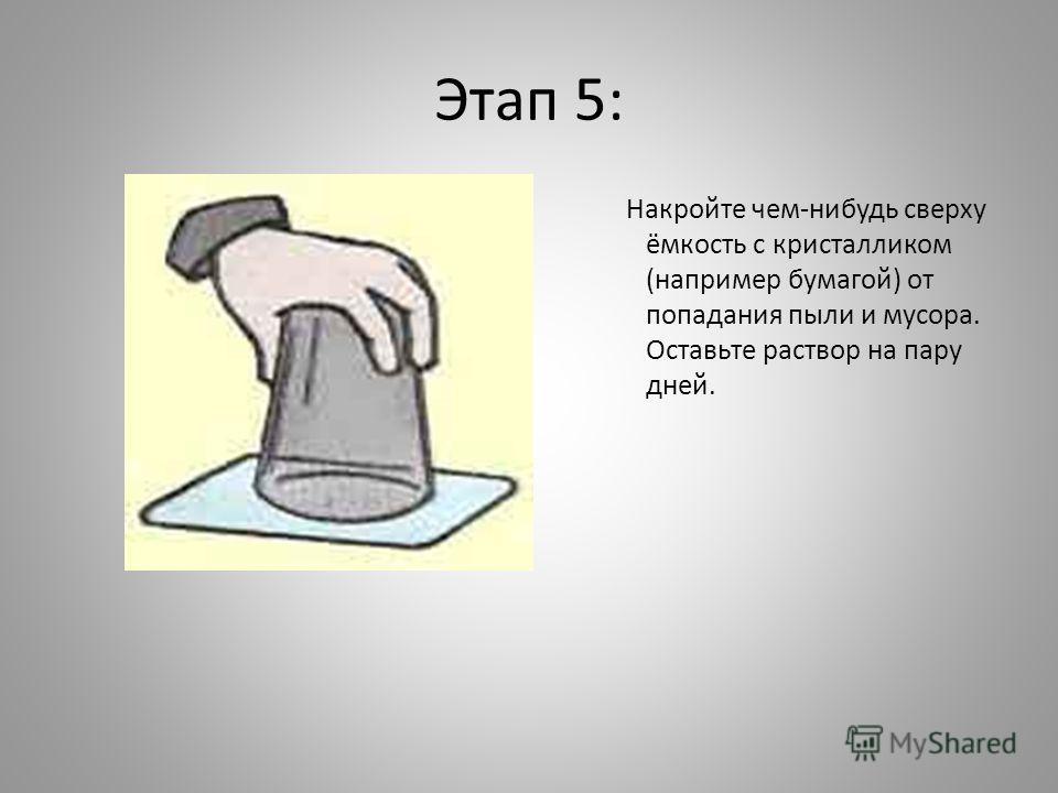 Этап 5: Накройте чем-нибудь сверху ёмкость с кристалликом (например бумагой) от попадания пыли и мусора. Оставьте раствор на пару дней.