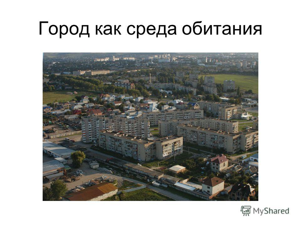 Город как среда обитания