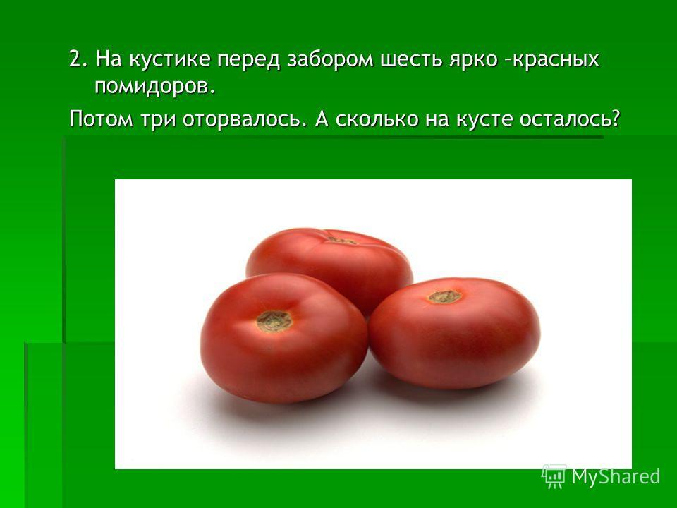 2. На кустике перед забором шесть ярко –красных помидоров. Потом три оторвалось. А сколько на кусте осталось?