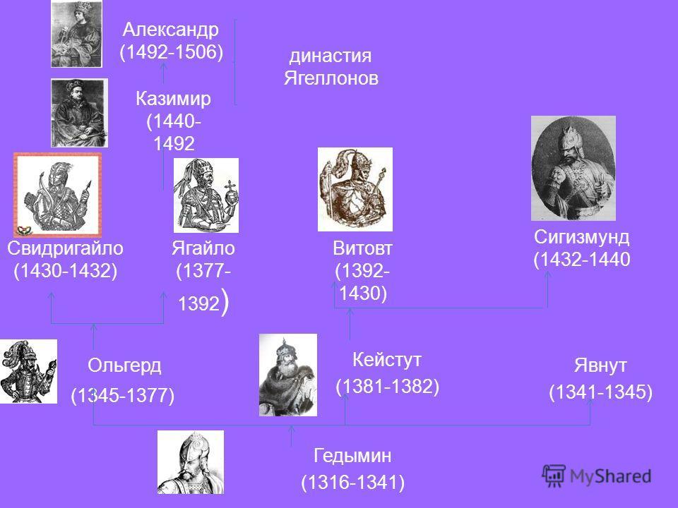 Гедымин (1316-1341) Ольгерд (1345-1377) Кейстут (1381-1382) Явнут (1341-1345) Свидригайло (1430-1432) Ягайло (1377- 1392 ) Сигизмунд (1432-1440 Витовт (1392- 1430) Казимир (1440- 1492 Александр (1492-1506) династия Ягеллонов