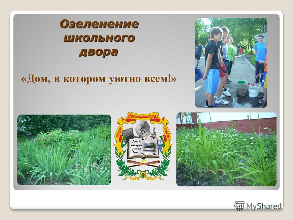 Озеленение школьного двора Озеленение школьного двора «Дом, в котором уютно всем!»