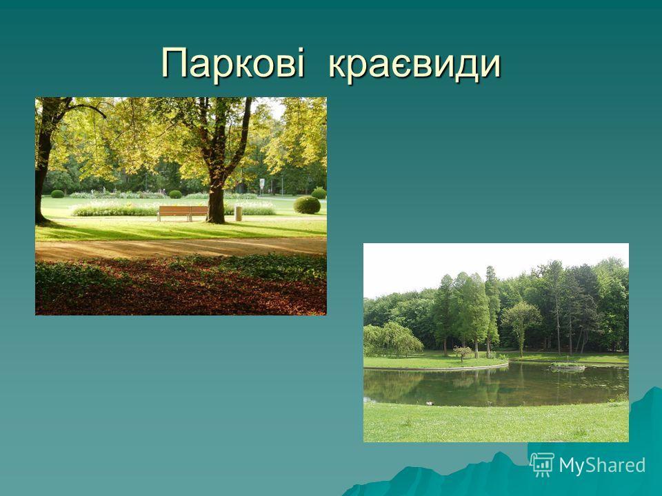 Паркові краєвиди