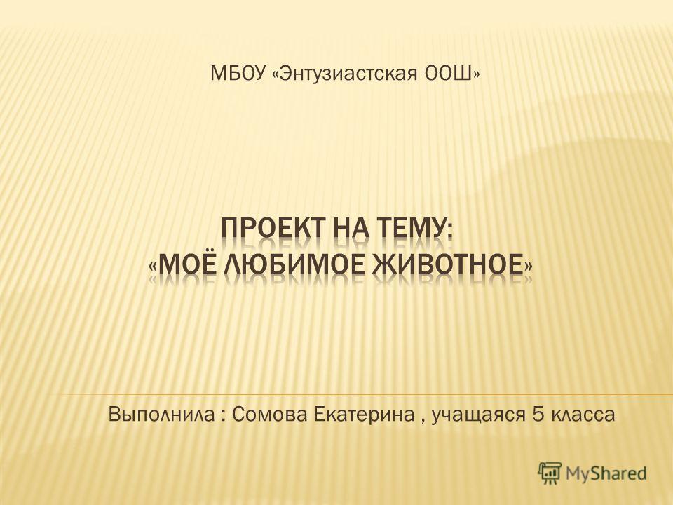 МБОУ «Энтузиастская ООШ» Выполнила : Сомова Екатерина, учащаяся 5 класса