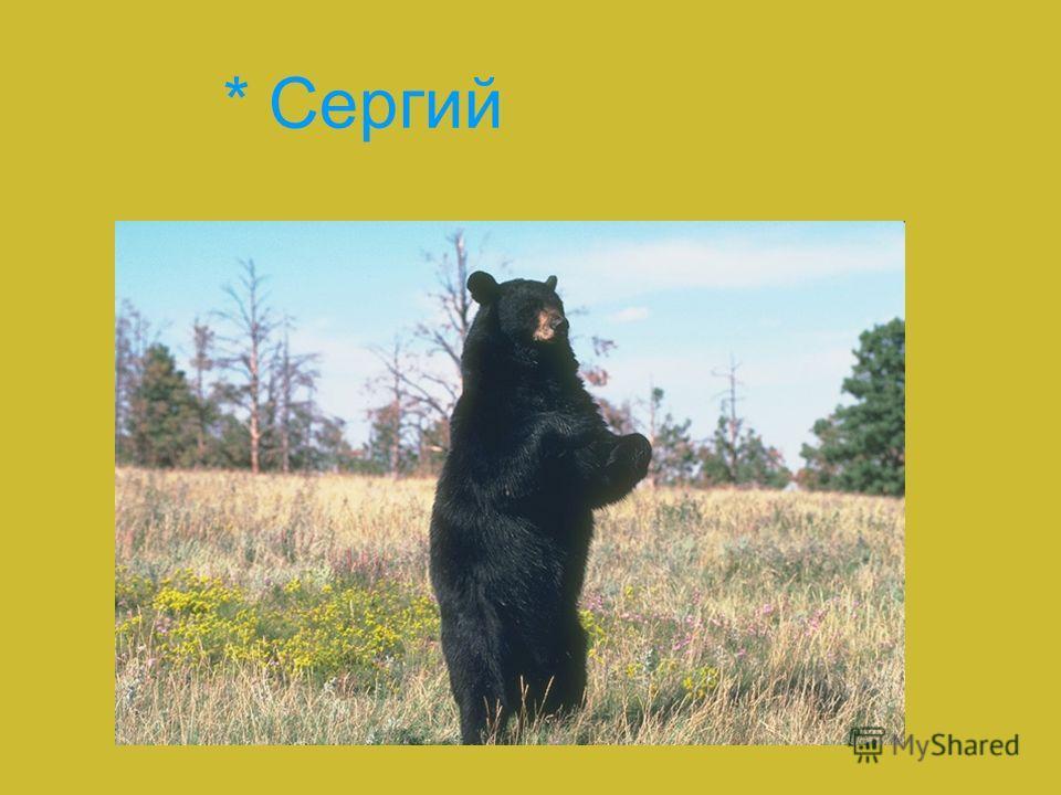 * Сергий