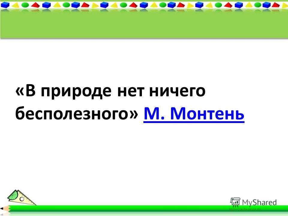 «В природе нет ничего бесполезного» М. МонтеньМ. Монтень