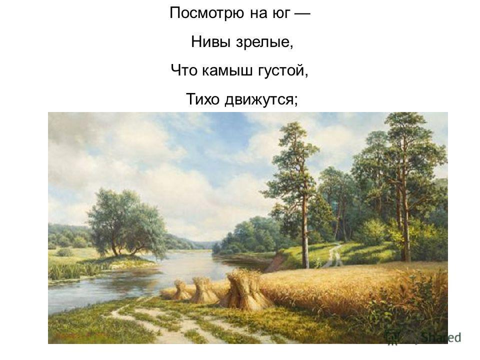 Посмотрю на юг Нивы зрелые, Что камыш густой, Тихо движутся;