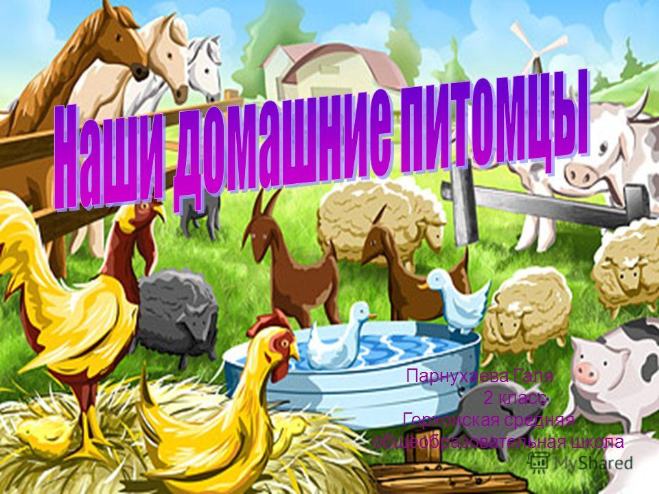 Парнухаева Галя 2 класс Горхонская средняя общеобразовательная школа