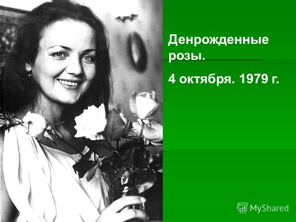Денрожденные розы. 4 октября. 1979 г.
