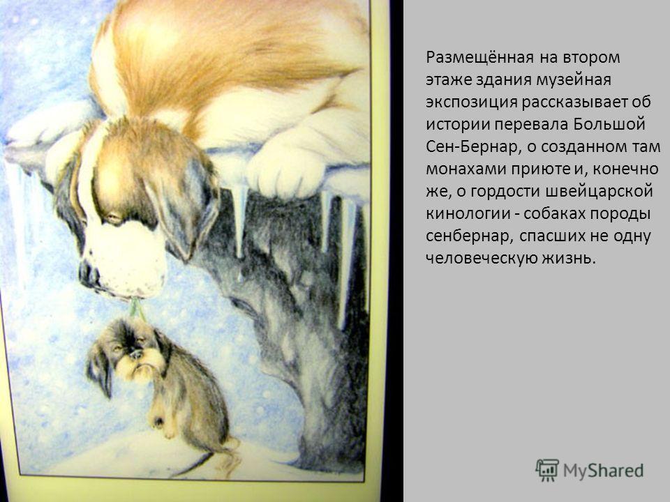 Размещённая на втором этаже здания музейная экспозиция рассказывает об истории перевала Большой Сен-Бернар, о созданном там монахами приюте и, конечно же, о гордости швейцарской кинологии - собаках породы сенбернар, спасших не одну человеческую жизнь