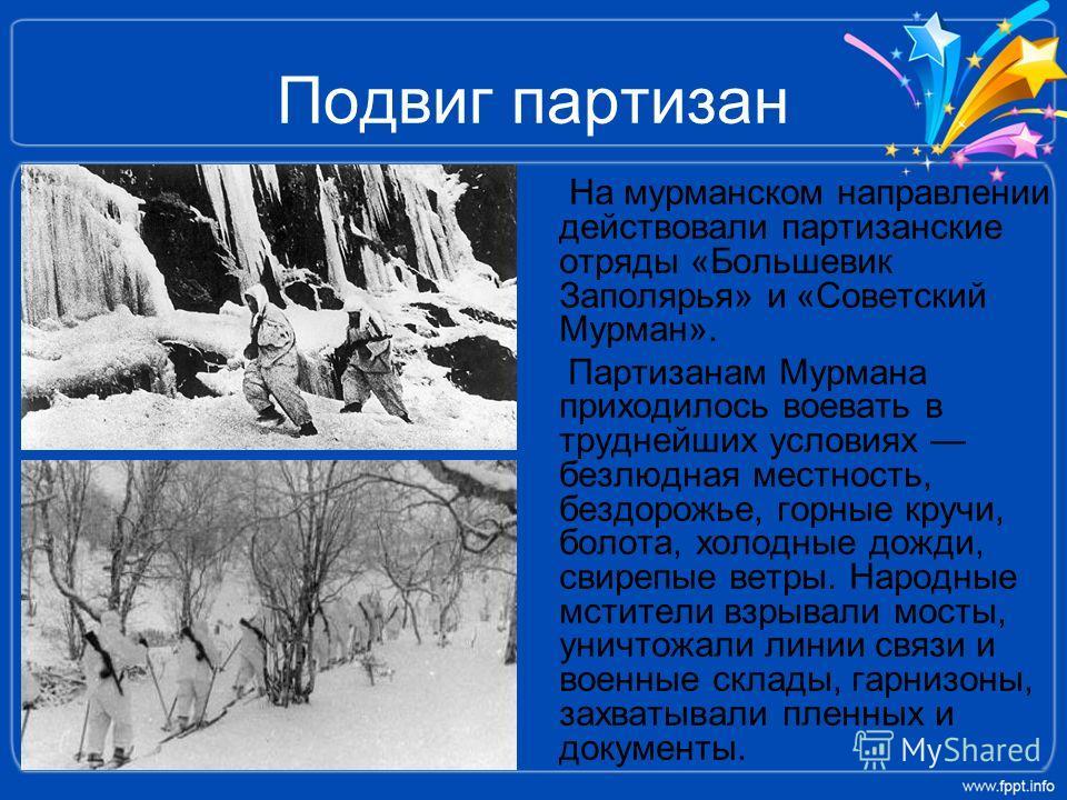 Подвиг партизан На мурманском направлении действовали партизанские отряды «Большевик Заполярья» и «Советский Мурман». Партизанам Мурмана приходилось воевать в труднейших условиях безлюдная местность, бездорожье, горные кручи, болота, холодные дожди,