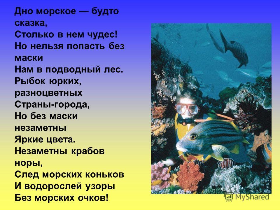 Дно морское будто сказка, Столько в нем чудес! Но нельзя попасть без маски Нам в подводный лес. Рыбок юрких, разноцветных Страны-города, Но без маски незаметны Яркие цвета. Незаметны крабов норы, След морских коньков И водорослей узоры Без морских оч
