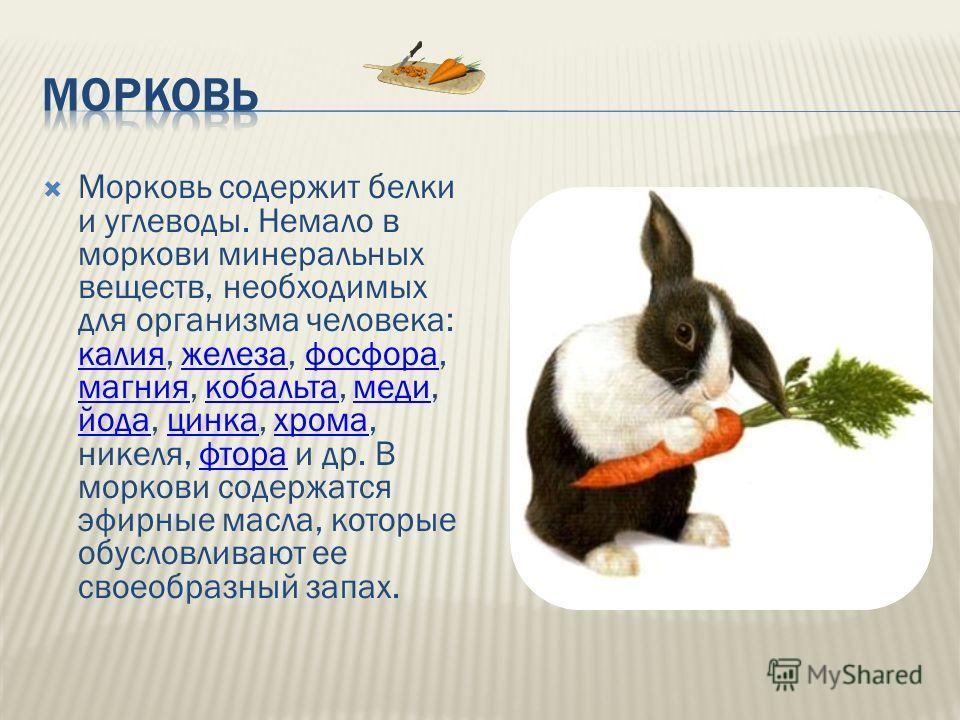 Морковь содержит белки и углеводы. Немало в моркови минеральных веществ, необходимых для организма человека: калия, железа, фосфора, магния, кобальта, меди, йода, цинка, хрома, никеля, фтора и др. В моркови содержатся эфирные масла, которые обусловли