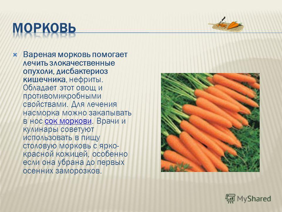 Вареная морковь помогает лечить злокачественные опухоли, дисбактериоз кишечника, нефриты. Обладает этот овощ и противомикробными свойствами. Для лечения насморка можно закапывать в нос сок моркови. Врачи и кулинары советуют использовать в пищу столов
