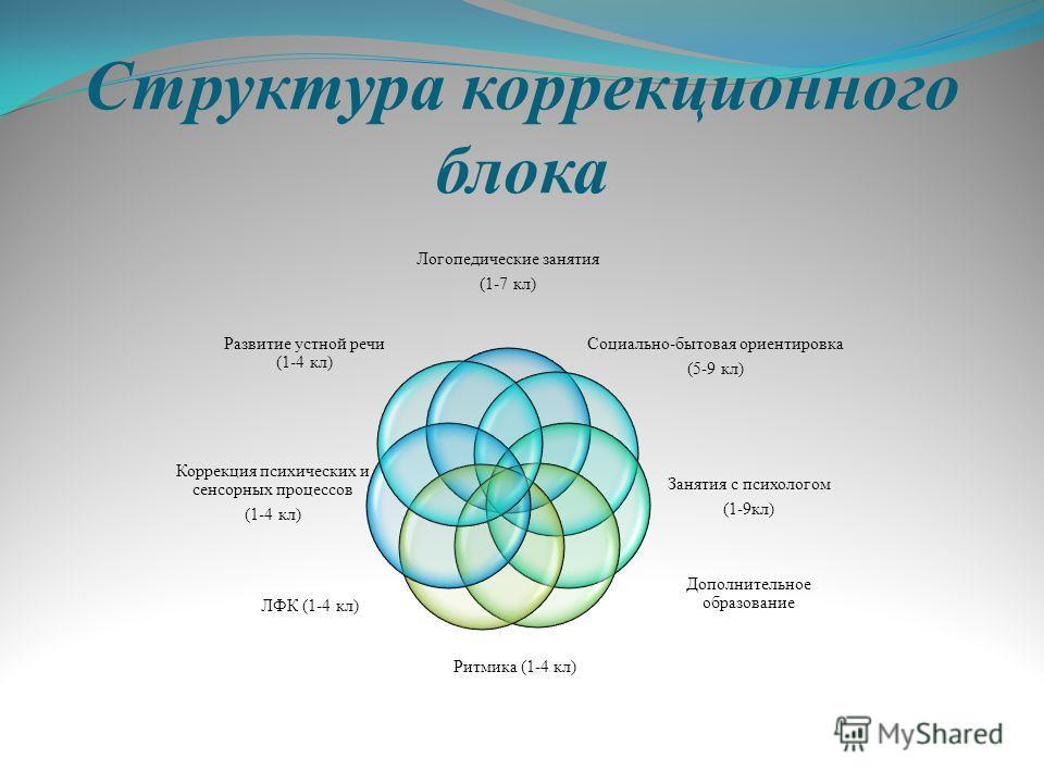 Структура коррекционного блока Логопедические занятия (1-7 кл) Социально-бытовая ориентировка (5-9 кл) Занятия с психологом (1-9 кл) Дополнительное образование Ритмика (1-4 кл) ЛФК (1-4 кл) Коррекция психических и сенсорных процессов (1-4 кл) Развити