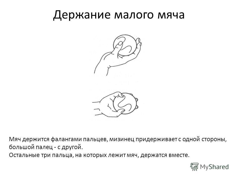 Держание малого мяча Мяч держится фалангами пальцев, мизинец придерживает с одной стороны, большой палец - с другой. Остальные три пальца, на которых лежит мяч, держатся вместе.