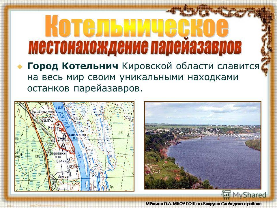 Город Котельнич Кировской области славится на весь мир своим уникальными находками останков парейазавров.