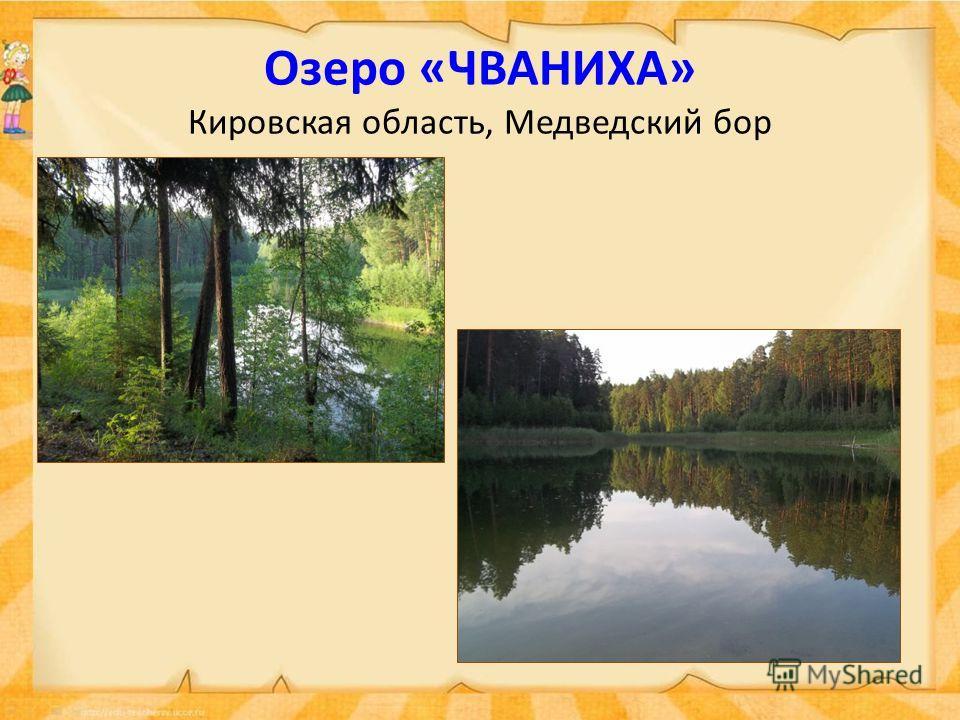 Озеро «ЧВАНИХА» Кировская область, Медведский бор