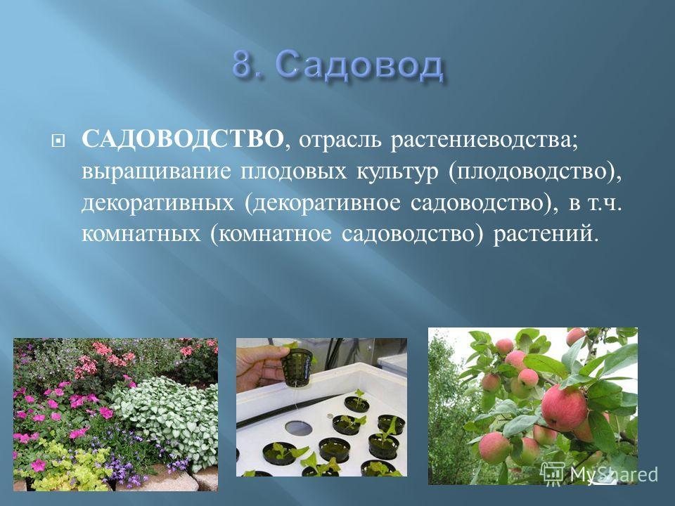 Презентация На Тему Фермер